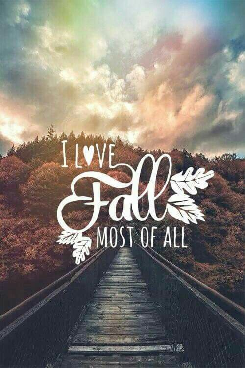 Love Fall   Tap To See Great October Quotes Wallpapers!