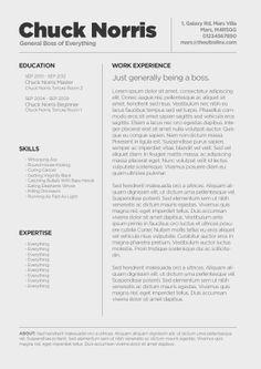 Best Cv  Resume Images On   Resume Ideas Resume