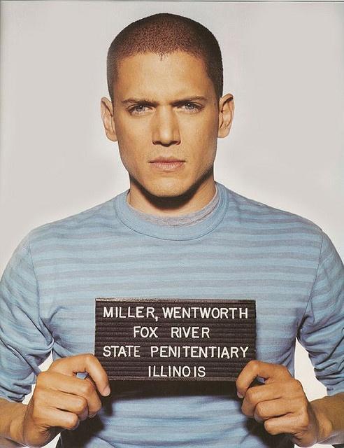 prison break schauspieler