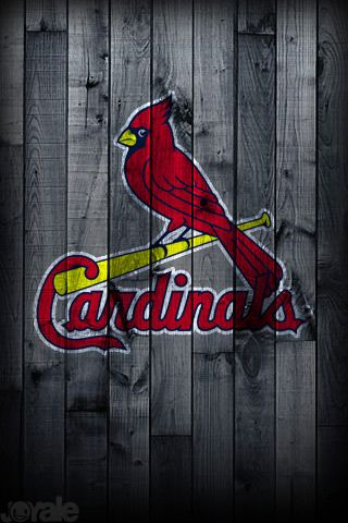 St louis cardinals screensaver - Arizona cardinals screensaver free ...