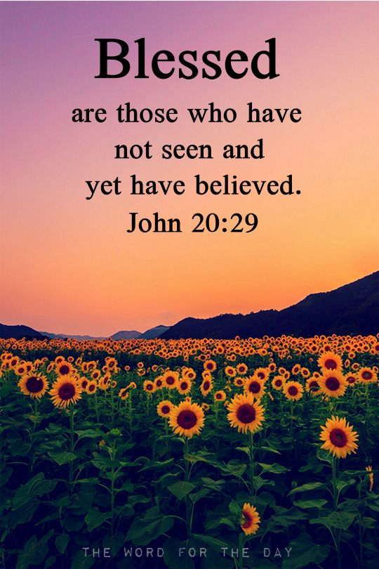 Sunflower Bible Verse Christian Quotes Easter